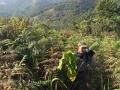 FF_hiking
