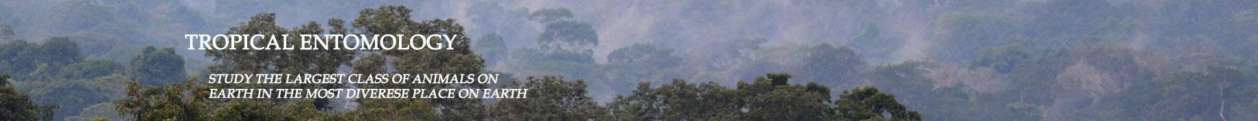 TropicalEntomologyTitle