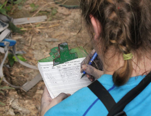 Tropical Biology and Primatology, July 2014
