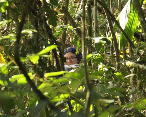 Tropical Biology and Primatology, May 2014