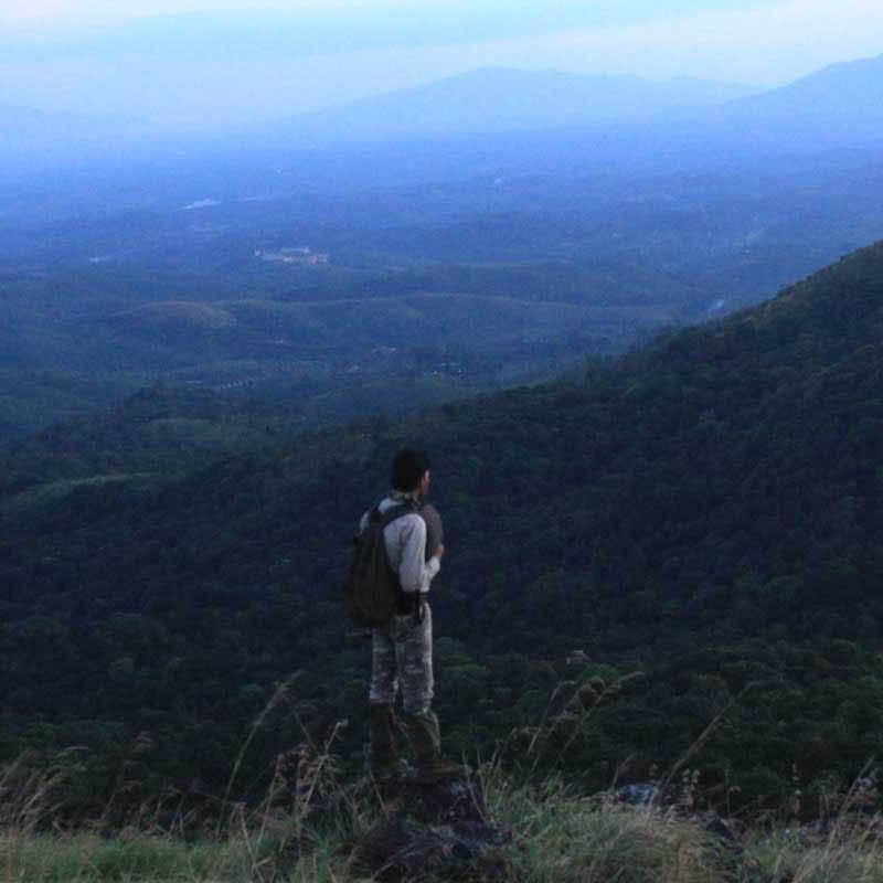lookoutpoint
