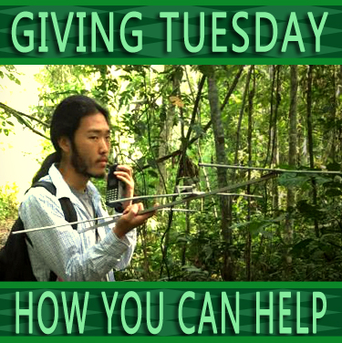 Giving Tuesday Telemetry copy