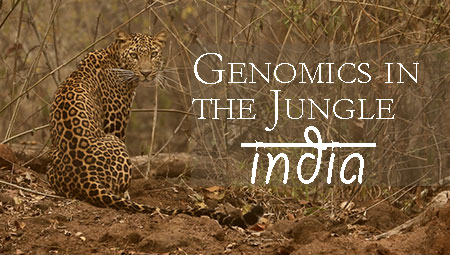 Genomics in the Jungle – India