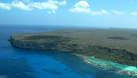 Mona Island Amphibian Expedition